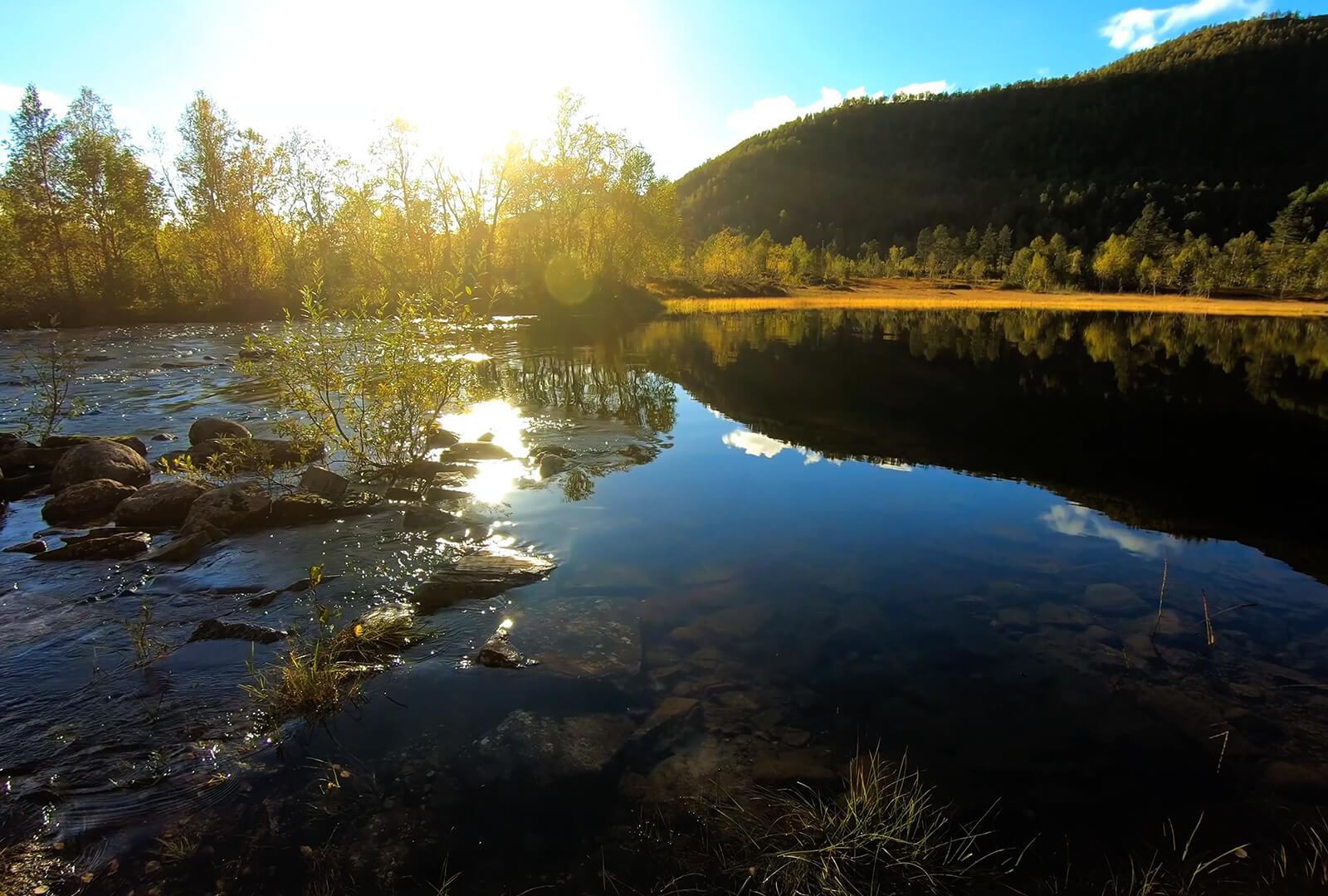 the sun rises over a serene lake
